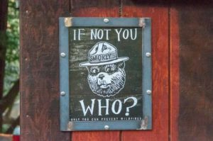 If not you who? Only you can prevent wildfires (Disclaimer)
