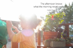 xp3-dot-us__DSC2729_the-afternoon-knows (The Afternoon Knows What The Morning Never Suspected)